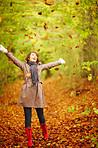 Step into an autumn wonder land - Seasonal