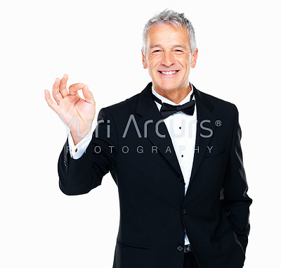 Portrait of smiling well dressed man showing 'okay' sign on white background